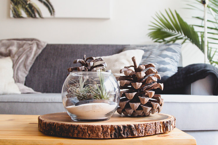 Dale un toque primaveral a tu casa con pequeños cambios